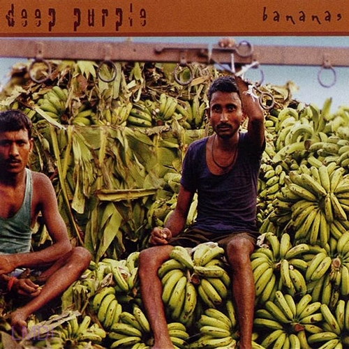 Bananas-Deep-Purple-le-livre-la-maison-des-legendes
